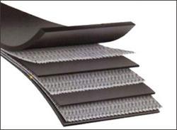 Fabric Reinforced Belt