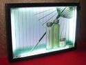 Indoor Trivision