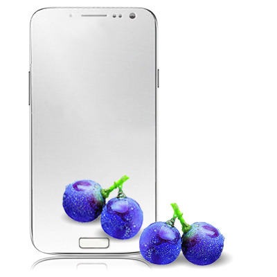 Quality Mirror LCD Screen Protector for Samsung Galaxy - Coimbatore