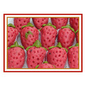 Kaju Strawberry Sweets