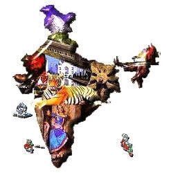 Indian Language Translation Services