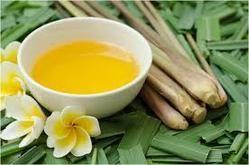 Cultivators of Citronella Essential Oil