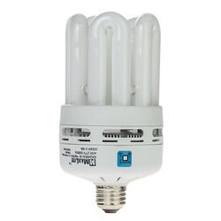 Medium Lumen CFL Bulbs
