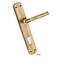 Sleek Brass Mortice Handle