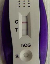 Urine Pregnancy Card