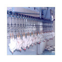Poultry Processing Plants