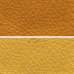 Gold Leather Cloth