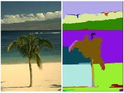 MATLAB Implementation Of Image Segmentation Algorithms