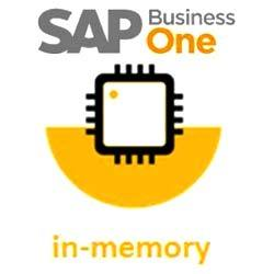 sap business one software licenses