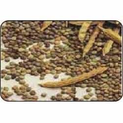 guar gum seeds