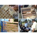 Training Of Bee Keeping Diploma & Certification Courses