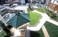 Rooftop Greening