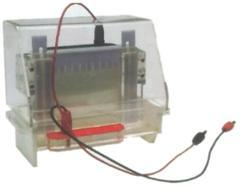 Electrophorosis Apparatus Vertical Tank