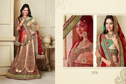 Beautiful Net Lehenga Choli