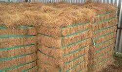 indian coir fiber