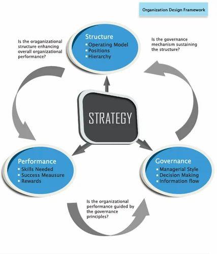 management organization design