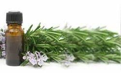 Eucalyptus Oil for Flavor And Fragrances