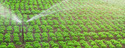 Agro Automation