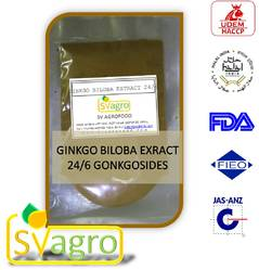 gingko biloba extract