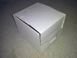 Corrugated Waterproof Boxes