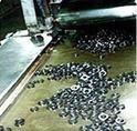 Oil Resistant Conveyor Belts for Petrochemicals