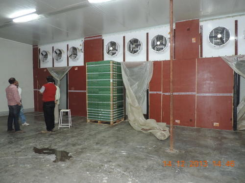 Cold Storage System Pre Cooling Rooms Service Provider