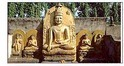 Walking In The Buddha's Footsteps