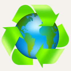 environmental audit services