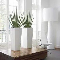 office flower pots. Indoor Office Pot Flower Pots T