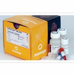 Epigenetics Products