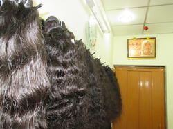 Indian Human Curly Hair