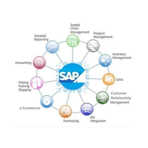 ERP SAP Software Business Application
