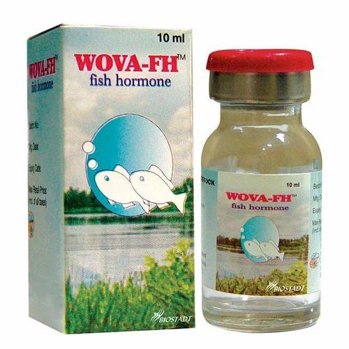 Fish Hormone