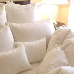 Allergy Pillow Buying Guide