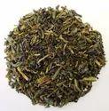 Camellia Sinensis Green Tea Extracts