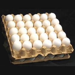 table chicken eggs