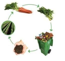 organic waste treatment service