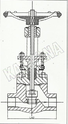 Forged Steel Glove Valve