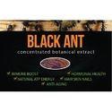 Black Ant Powder Polyrachis Extract