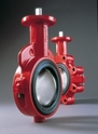 Bray Resilient Seated - Series 20/21 Valve Butterfly Valves