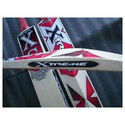 XS English Willow Cricket Bats