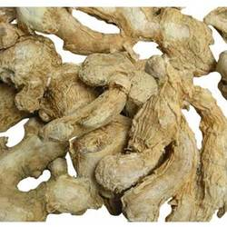 Saunth / Dry Ginger