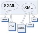 XML / Html/ Sgml/  Xhtml  Conversion Services