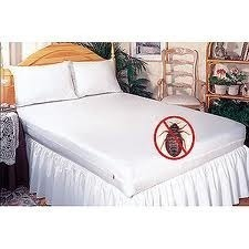 mattress cover for bed bugs