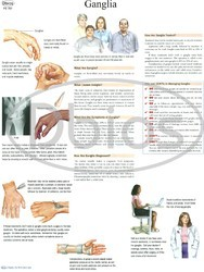 Orthopedics Charts