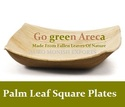 Palm Leaf Square Plate