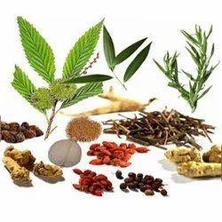 recipe: organic herbal extracts [28]