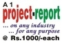 A1 Project Reports