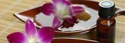Cultivators of Jasmine Essential Oil
