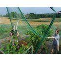 Bird Aviary Netting